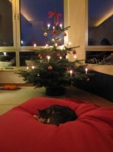 weihnachtsmiez