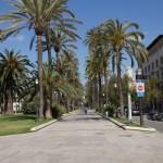 Mallorca_2011_39